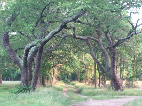 heckscher-state-park