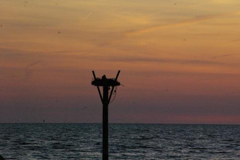 sunrise 011